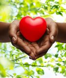 Female hands with small red heart. Health, medicine and charity concept - close up of african american female hands with small red heart over green natural royalty free stock photos
