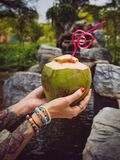 Female hands in tattoos hold a coconut with a tubule in Thailand`s tropical garden. modern style of rest. Thai style stock images