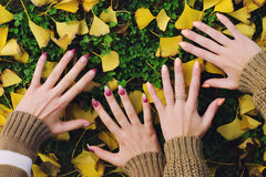 Female hands touching ground on beautiful autumn day Stock Image