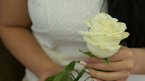 Female hands touching white rose. Close up. Professional shot in 4K resolution. 071. You can use it e.g. in your commercial video, business, presentation stock footage