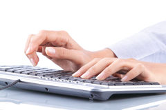 Female hands typing Royalty Free Stock Image