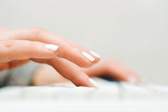Female hands typing on computer keyboard Stock Image