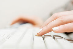 Female hands typing on the computer keyboard Stock Photos
