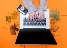 Female hands typing at laptop computer near camera. With autumn maple leaves aroung at orange background Stock Photos