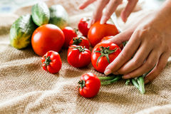Female hands and vegetable composition for fresh salad: cucumbers, tomatoes  green onions on a sacking tablecloth. Royalty Free Stock Photo