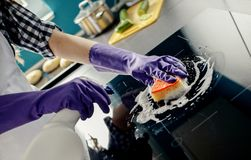 Female hands washes the induction hob Stock Photo