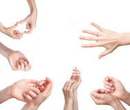 Female hands on white Royalty Free Stock Images