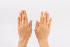 Female hands on a white background. Gestures Stock Image