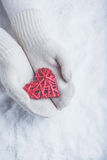 Female hands in white knitted mittens with entwined vintage romantic red heart on snow background. Love and St. Valentine concept. Stock Image