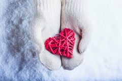 Female hands in white knitted mittens with entwined vintage romantic red heart on snow background. Love and St. Valentine concept Royalty Free Stock Image