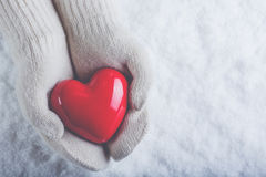 Female hands in white knitted mittens with a glossy red heart on a snow background. Love and St. Valentine concept. Stock Photos