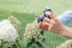 Free Female Hands With An Antique Camera In Front Of A White Flower Royalty Free Stock Images - 158832789