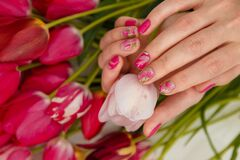 Free Female Hands With Tender Spring Manicure Holding Pink Fresh Tulip On Flowers Background. Nail Art, Gel Nails Polish Design Stock Images - 190198474