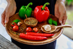 Female hands with a wooden tray with fresh cherry tomatoes, garlic cloves, chili peppers, basil leaves, red and green capsicums, m royalty free stock photos