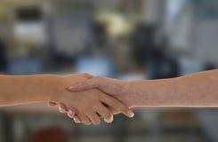 Female Handshake Royalty Free Stock Images