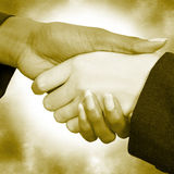 Female Handshake Stock Photo