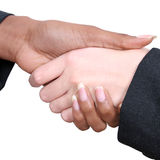 Female Handshake Stock Photography