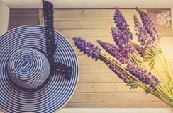 Female hat, in stripes, top view. Conceptual image. Female hat and lupine flowers, on a mirror background. Royalty Free Stock Photography