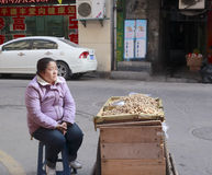 Female hawker selling peanuts Stock Photography