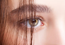 Female hazel eye makeup Royalty Free Stock Photos