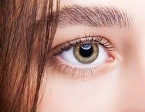 Female hazel eye makeup Stock Photos