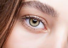 Female hazel eye makeup Royalty Free Stock Photography