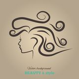 Female heads with beautiful hair. vector Royalty Free Stock Photography