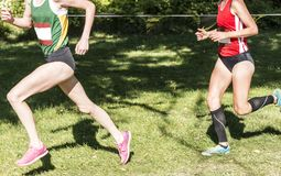 Two high school girls racing a 5K on a grass field. A female high school cross country runner in first place, is being chased by the runner in second place, but Royalty Free Stock Photography