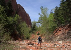 Female hiker Royalty Free Stock Photography