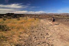 Free Female Hiker Stock Photos - 86041243