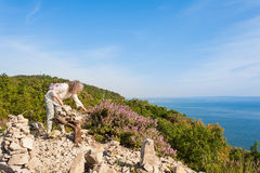 Female hiker collects wild Sage on cliff overlooking the sea. Stock Photo