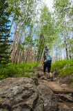 Female hiker on the Cub Lake trail in Rocky Muntain national Par Stock Images