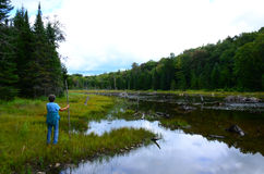 Female hiker looking at old beaver pond landscape Stock Images