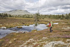 Female Hiker in Norway Royalty Free Stock Image