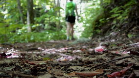 Female Hiker Passing By (Ground Level View) Stock Image