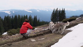Female hiker photographing two husky dogs and landscape in mountains. Slow motion stock video