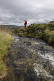 Female Hiker on the Southern Kungsleden Royalty Free Stock Photos