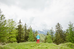 Female hiker in spring forest Stock Image