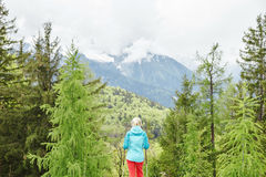 Female hiker in spring forest Stock Images