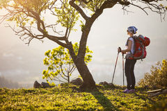 Female hiker standing on cliff Stock Photography