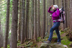 Female Hiker Staying in Deep Old Forest Stock Photo