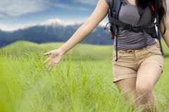 Female hiker touching the green grass Royalty Free Stock Photo