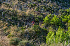 Female hiking in the mountains of Tramuntana, Mallorca, Baleares, Spain Stock Image