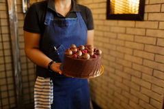 A female is holding a chocolate cake with organic berries on a brown wall background from stones. Sweet berries cake. A woman wearing a blue apron is holding a Royalty Free Stock Image