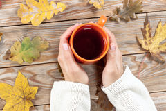 Female holding cup of tea on autumn background. Stock Image