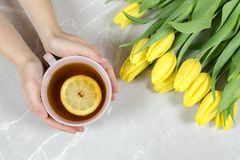Female holding cup of tea and yellow tulips. royalty free stock photography