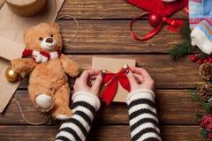 Female holding a little teddy bear Royalty Free Stock Photo