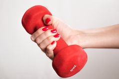 Female holding red dumbbell in hand isolated on white background. Close up. stock images