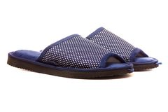 Female home slippers blue stock image