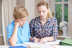 Female Home Tutor Helping Boy With Studies. Female Home Tutor Helps Boy With Studies Stock Photo